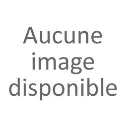 Ancelin-Schutzenberger Anne
